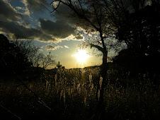 丘の上に沈む太陽