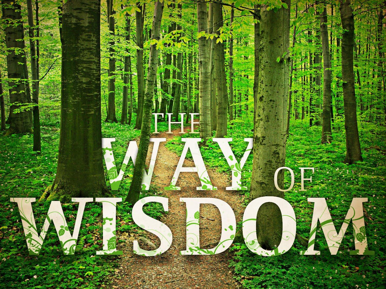 Foundational Devotions... Wisdom