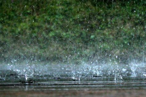 [regn]