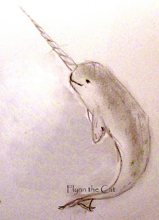 pencil narwhal sketch