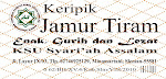 Keripik Jamur Tiram