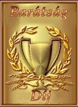 Barátság díj Riától, amit nagyon köszönök