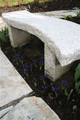 Mini irises and granite garden bench