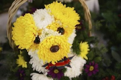 Puppy flower arrangement