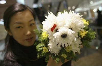 Florist with puppy floral arrangement