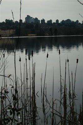 View across Deer Lake in Burnaby BC