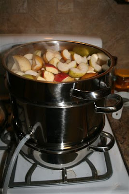 Apples and Pears in the Nutristeamer Juicer