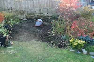 Garden reno day 1