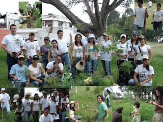 Reforestacin Barranco San Fco 2