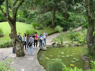 Visita Arboretum UFM