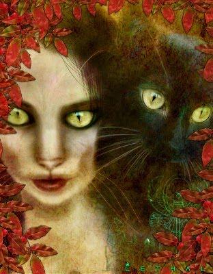 Benção das Bruxas para os Gatos