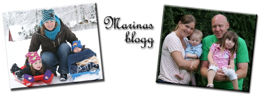 Marinas blogg