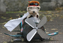 Capitão Cão.