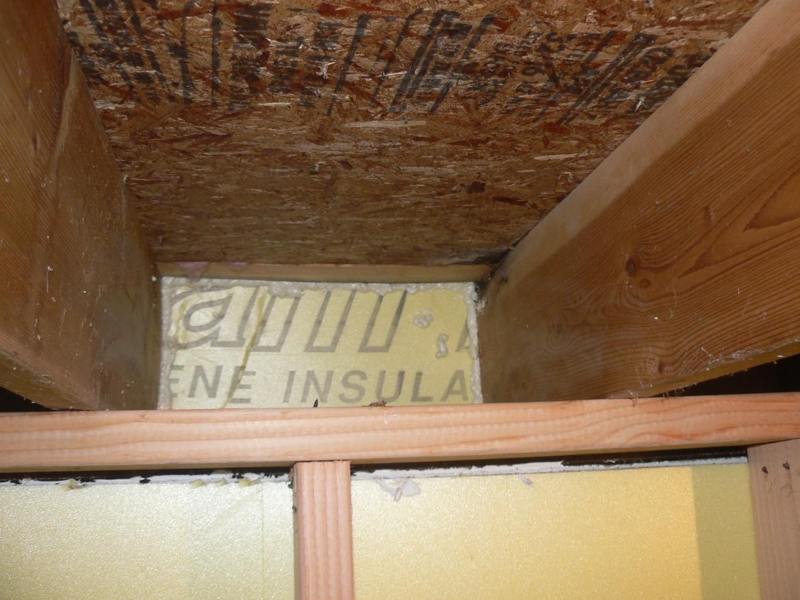 epic basement remodel  december 2010