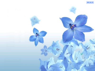 3d Wallpaper Of Flowers. images them as wallpaper for