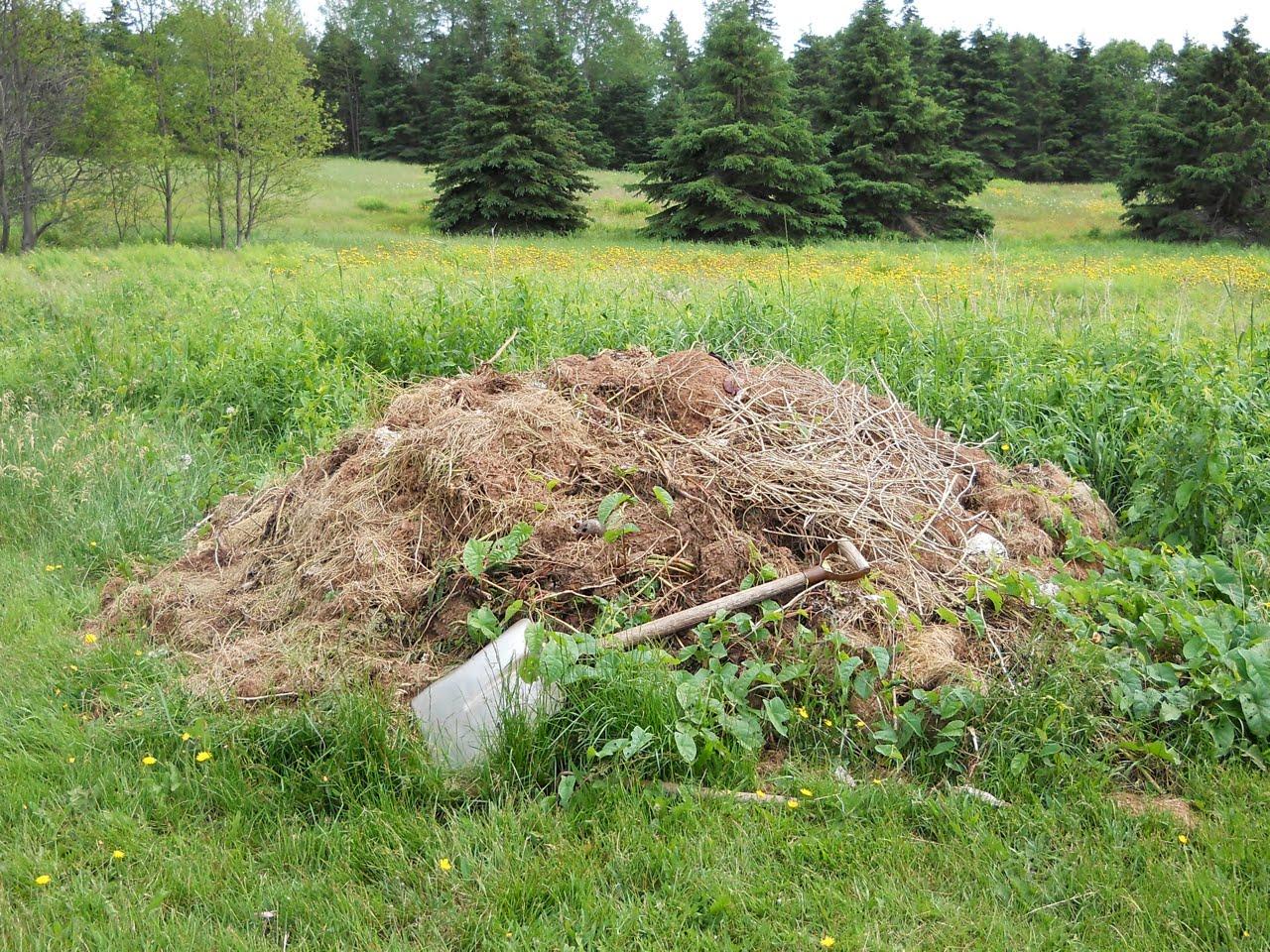 Canoe corner the new compost bin for Compost soil