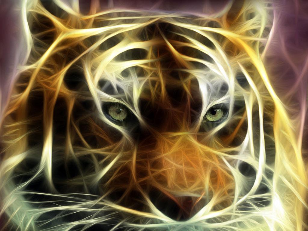 http://1.bp.blogspot.com/_fwMCXsGejd8/TAOxb0UIZbI/AAAAAAAAACo/0yrf9NP_S9s/s1600/11419tigre1.jpg