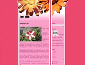 [pink-flower.jpg]