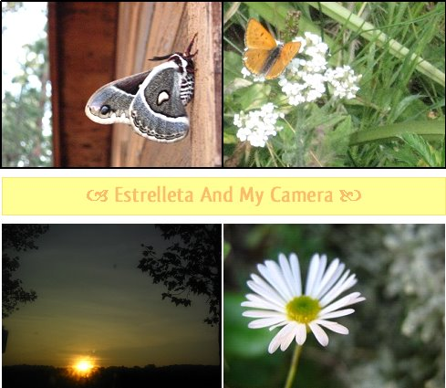 Estrelleta and my camera