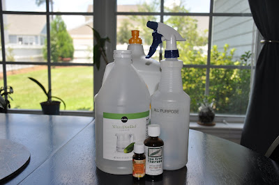 Homemade All Purpose Spray Cleaner