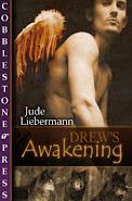 Drew's Awakening