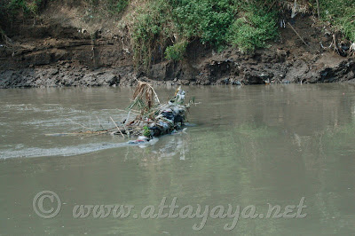 Sampah di Tepi Sungai Bengawan Solo