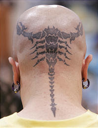 Scorpion Tattoos in Head