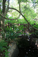Bridge in the herb garden
