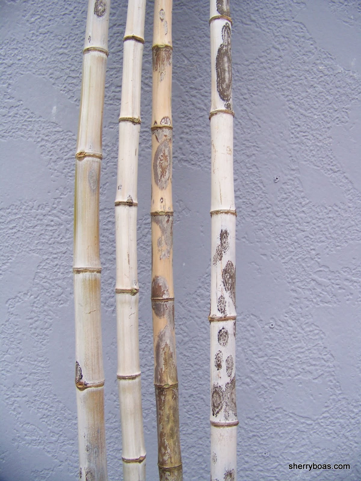 Large Bamboo Poles ~ Beautiful bamboo go wild over our spotted leopard