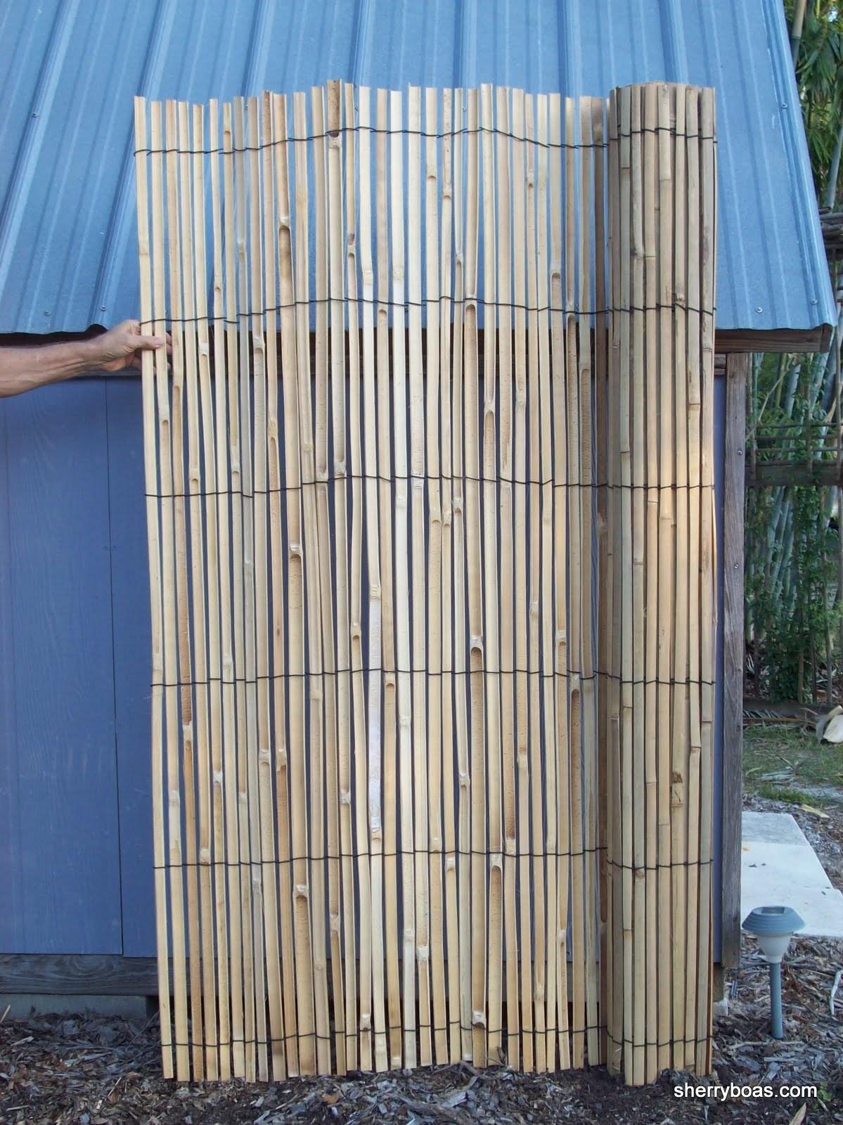 beautiful bamboo  photos of split bamboo fencing