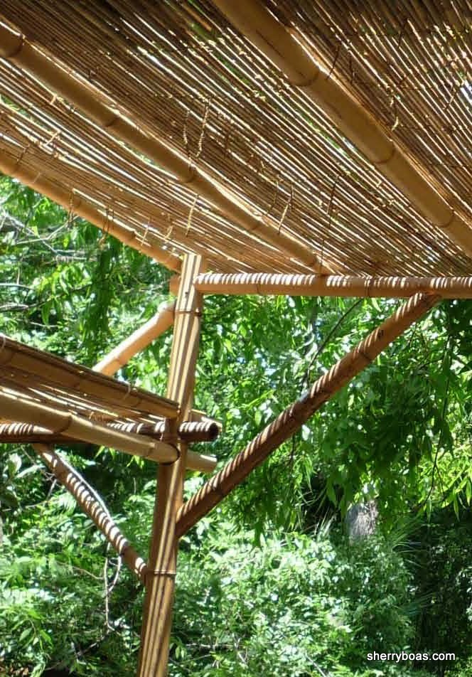 two different sizes of bamboo fencing