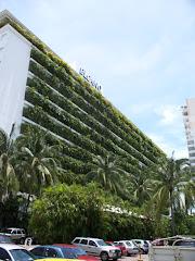 ACAPULCO 1 HOTEL ELCANO MÉXICO