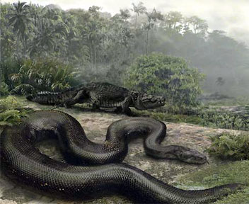 Ular terbesar di Dunia - Titanoboa. - Cool Unique Fact