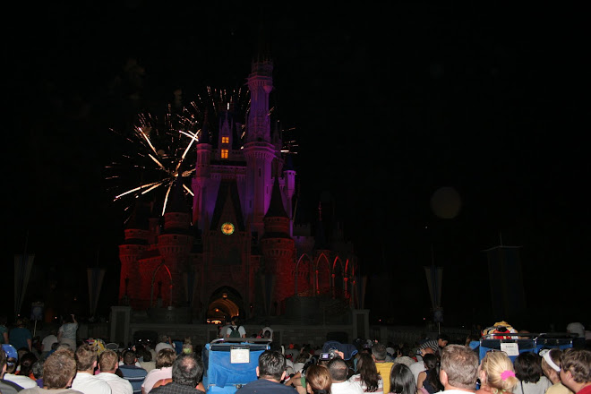 Espectaculo Castillo Disney