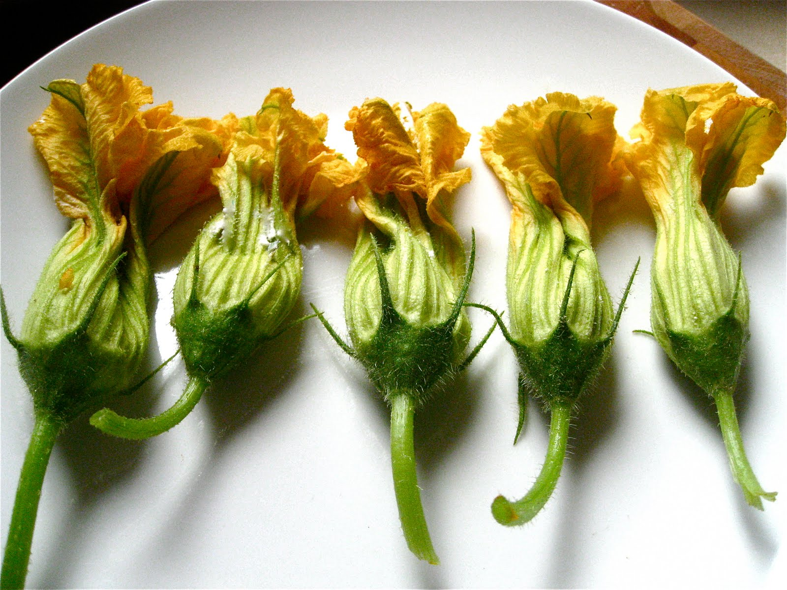 Stuffed Zucchini Blossoms | TO CATCH A COOK