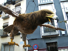 Under a Big Spanish Bird 2008.......