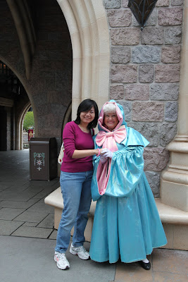 Cinderella Fairy God Mother