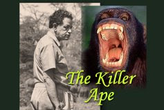 THE KILLER APE