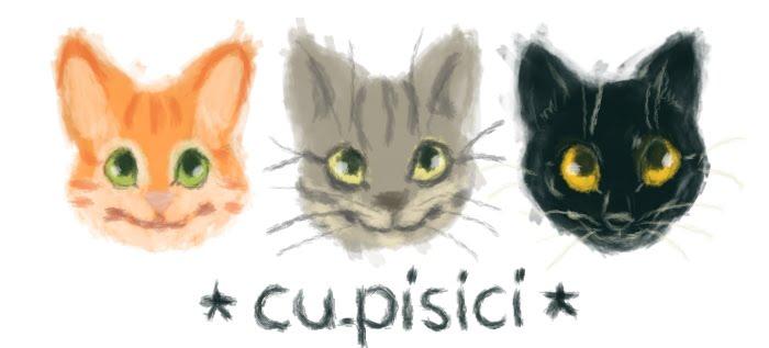 cu.pisici