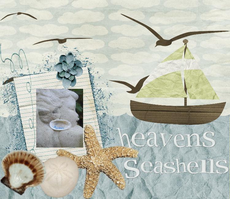 Heavens Seashells