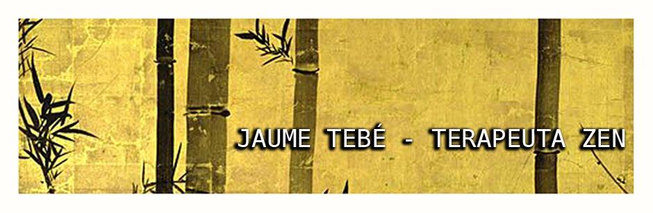 JAUME TEBE - TERAPEUTA ZEN