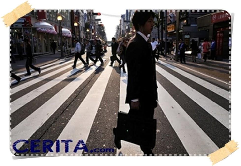 CERITA.com