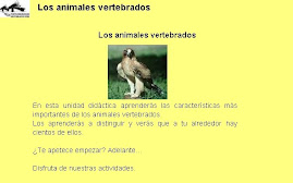 ANIMALES VERTEBRADOS