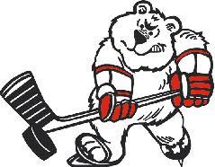 Image result for north saint paul polars logo