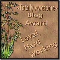 Blog award.www.aotoquedoamor.blogspot.com