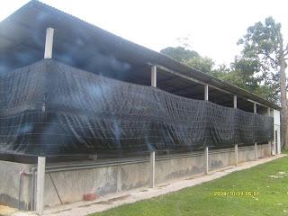 Kursus Design on Miracle Aqua Work  Kursus Menternak Udang Galah Dalam Kolam Simen