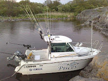 Team Pisces båt