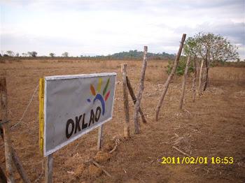 進入OKLAO的農場參觀
