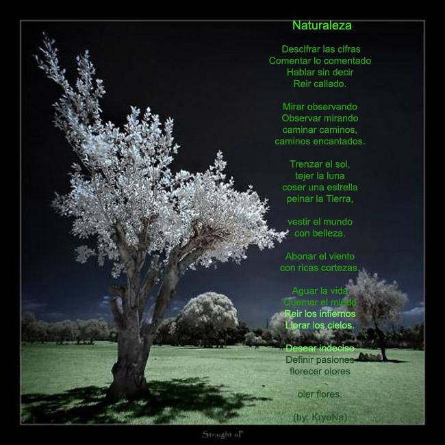 SABIPLANTAS - NORMAL NOCAIMA: POEMA A LA NATURALEZA