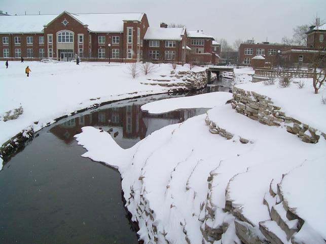 Invierno en Urbana-Champaign